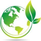 Árbol del globo Imagen de archivo libre de regalías