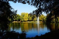 árbol del herbst del otoño Imagen de archivo libre de regalías