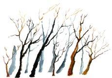 Árbol del invierno de la acuarela Fotos de archivo