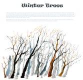 Árbol del invierno de la acuarela Fotos de archivo libres de regalías