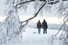 Árbol del invierno de la montaña de la mujer del hombre de los pares Foto de archivo