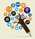 Árbol del lápiz del concepto del Web del márketing Imagen de archivo libre de regalías