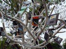 Árbol del libro, actividad al aire libre del verano Imagenes de archivo
