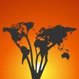 Árbol del mapa del mundo en la puesta del sol Fotografía de archivo