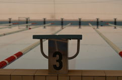 Árbol del número de bloque el comenzar en piscina Fotos de archivo libres de regalías