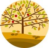 Árbol del otoño aislado en fondo amarillo Fotos de archivo libres de regalías