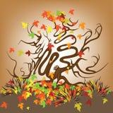 Árbol del otoño con las ramas curvadas Imagenes de archivo