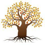 Árbol del otoño del vector Foto de archivo