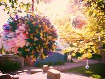 Árbol del Pom-pom Fotos de archivo libres de regalías