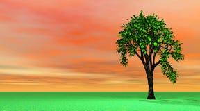 Árbol del resorte libre illustration