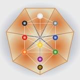 Árbol del símbolo y del heptágono de la vida Fotos de archivo libres de regalías