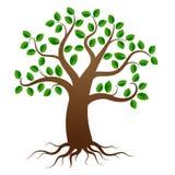 Árbol del vector con las raíces stock de ilustración