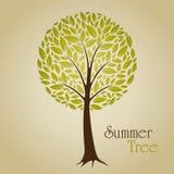 Árbol del verano Imagenes de archivo