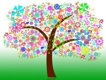 Árbol del verano Fotografía de archivo libre de regalías
