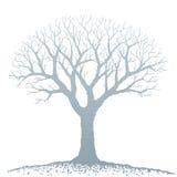 Árbol descubierto (vector) stock de ilustración
