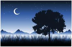 Árbol e hierba (vector) Imagen de archivo libre de regalías