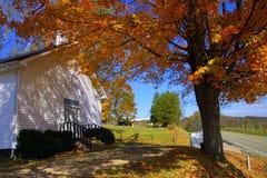 Árbol e iglesia de arce Imágenes de archivo libres de regalías