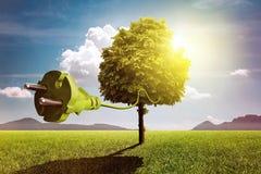 Árbol eléctrico Foto de archivo libre de regalías