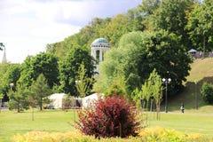 Árbol en campo El terraplén de Volga es la perla de Yaroslavl Parque encendido foto de archivo libre de regalías