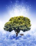 Árbol en cielo Fotos de archivo
