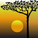 Árbol en el desierto libre illustration