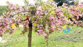 Árbol en el jardín - guardería moderna de Pascua de la construcción pública - preescolar