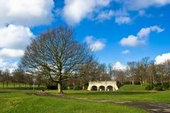 Árbol en el parque Huddersfield de Greenhead Imágenes de archivo libres de regalías