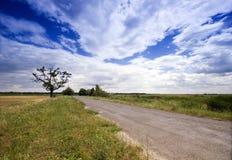 Árbol en el rural Fotos de archivo libres de regalías