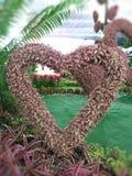 Árbol en forma de corazón Para el día de San Valentín fotos de archivo