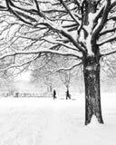 Árbol en invierno con los niños y la nieve Imagen de archivo libre de regalías