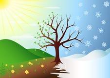 Árbol en invierno y resorte ilustración del vector