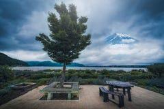 Árbol en jardín cerca del lago del kawaguchiko con el pico del Mt Fuji b foto de archivo