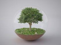 Árbol en la bola de cristal Imágenes de archivo libres de regalías