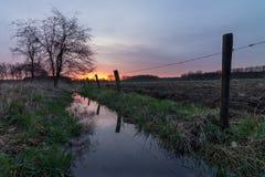 Árbol en la cala en la puesta del sol Imagenes de archivo
