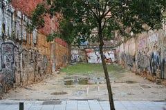 Árbol en la ciudad Fotos de archivo libres de regalías