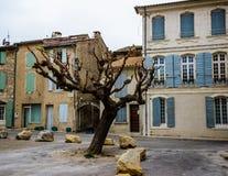 Árbol en la ciudad Fotos de archivo