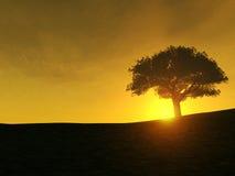 Árbol en la colina Libre Illustration