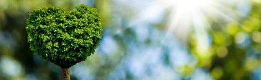 árbol en la forma del corazón como símbolo del amor y de la dedicación ilustración del vector