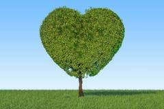 Árbol en la forma del corazón en la hierba verde contra el cielo azul, Imagenes de archivo