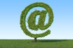 Árbol en la forma del símbolo del correo en la hierba verde contra azul Imagenes de archivo