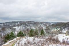 Árbol en la nieve en el parque de Lviv Fotografía de archivo libre de regalías