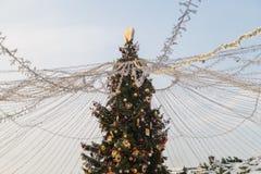 Árbol en la Plaza Roja Fotos de archivo
