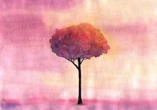 Árbol en la puesta del sol por la acuarela Imágenes de archivo libres de regalías