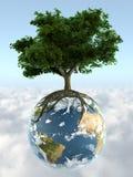 Árbol en la tierra del planeta Imágenes de archivo libres de regalías