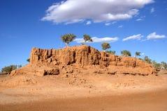 Árbol en Mongolia Imagen de archivo libre de regalías