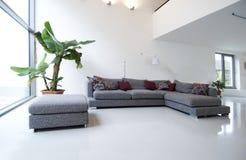 Árbol en sala de estar Imagen de archivo libre de regalías