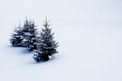 Árbol en un fondo de la nieve blanca Imagenes de archivo