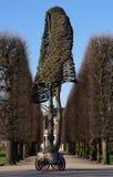 Árbol en un parque Imágenes de archivo libres de regalías