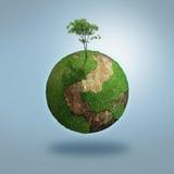 Árbol encima del mundo Imagen de archivo
