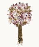 Árbol euro aislado del billete de banco Fotos de archivo libres de regalías